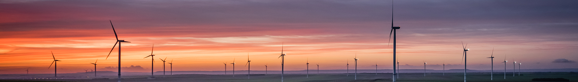 Panorama of wind turbines