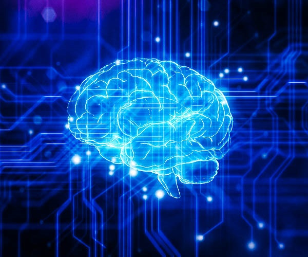 brain with circuits for machine learning